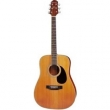 CRAFTER HD-24/CD WESTERN GUITAR